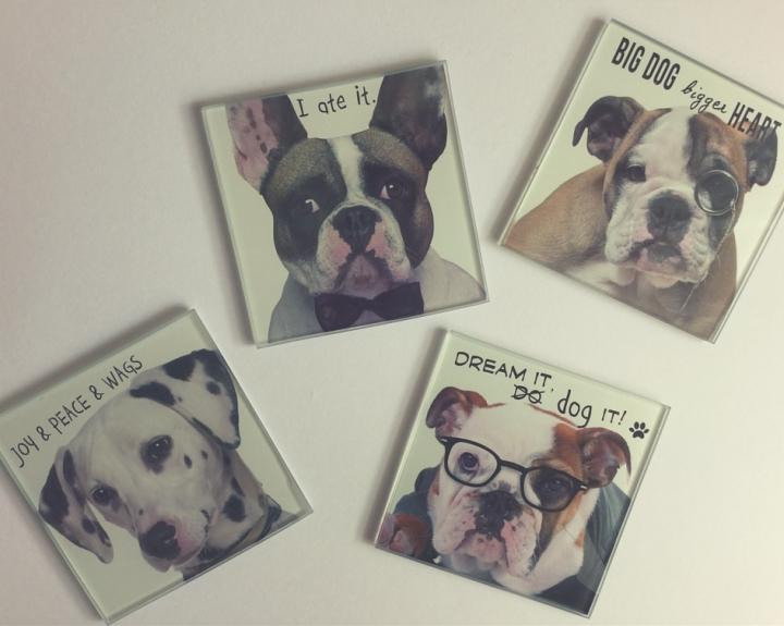 Стъклена подложка за чаша кучета jumbo 4