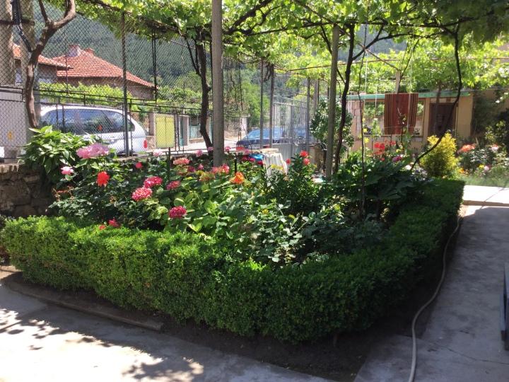 градината на баба